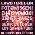 blogger-aktion-2